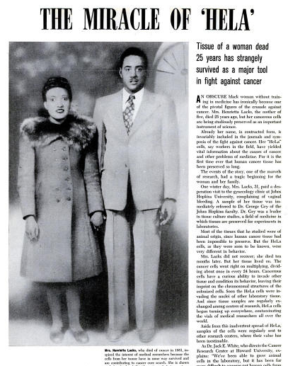 the immortal life of henrietta lacks essay